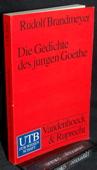 Brandmeyer, Die Gedichte des jungen Goethe