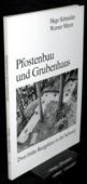 Schneider, Pfostenbau und Grubenhaus