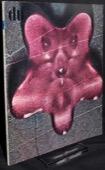 du 1969/06, Varia.